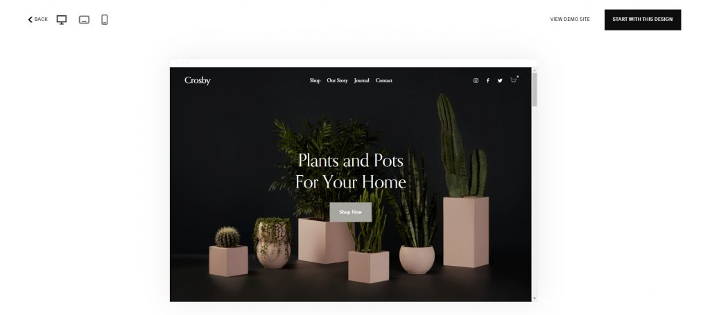"""Template """"Crosby"""": indoor plants in square pots."""