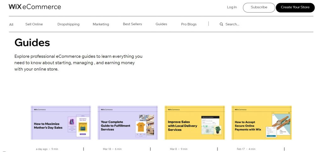 Guidelines about eCommerce. Wix.