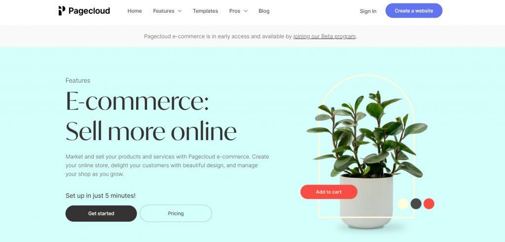 A description of e-Commerce features. PageCloud.